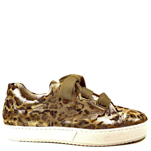 e5c75b30d5f 26505 GABOR - Mohr & Mohr by Govers Schoenen - Exclusieve schoenenmode